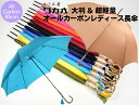 傘 レディース 長傘 WAKAO オールカーボン 超軽量 大判 親骨65cm 手開き 8本骨 寒竹 手元 日本製 雨傘 おしゃれ ブラ…