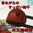 【送料無料】昔ながらのすっぱい梅干 氷見稲積梅 1kg (ご自宅用)【無添加】【しそ梅】