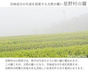 【玉露のふるさと福岡八女星野村のおいしい抹茶】星野園製抹茶「星峰」100g缶