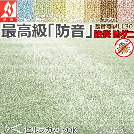 カーペット 防音 防炎 10畳 『ウェルネス』 352×440cm LL30 防ダニ 国産 丸巻き 8サイズ規格 アイコン