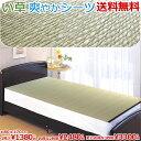 カーペット 1畳 い草 ラグ / 寝ござ 1本組 / シングル い草シーツ 約80×170cm クール 寝茣蓙 ねござ 送料無料(北海…