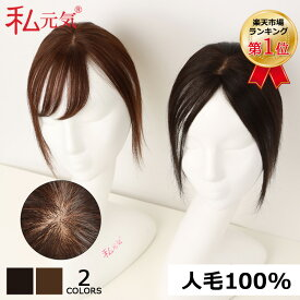人毛100% 部分ウィッグ 前髪ウィッグ 人毛 ウィッグ かつら ポイントウィッグ 白髪かくし つけ毛 私元気 BHAD58