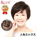 人毛 フルウィッグ ウィッグ ショート 医療用ウィッグ 女性 かつら ミセス 通気性 夏 私元気 JH30S004-N2