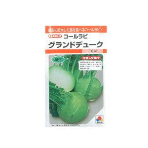 コールラビ 種 グランドデューク タキイ交配 1.6ml