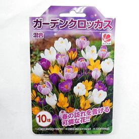 花の大和 クロッカス 球根 混合 10球 6袋までメール便発送