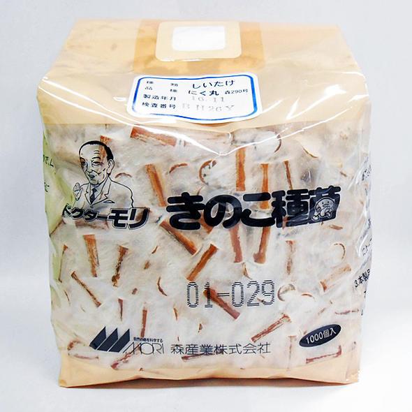 原木栽培用 キノコ種菌(種駒菌) しいたけ にく丸 森290号 秋春出 1000駒