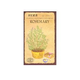 ハーブ種 ローズマリー 0.1ml