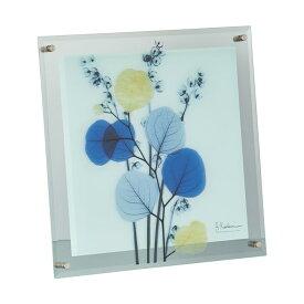 X RAY ガラス アート「カラフルユーカリ(Mサイズ)」【インテリア雑貨 インテリア小物 額縁 シンプル】