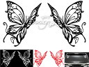 Butterflyw 1