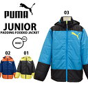 puma/プーマジュニア中わたジャケット835660【あす楽対応_北海道】【RCP】