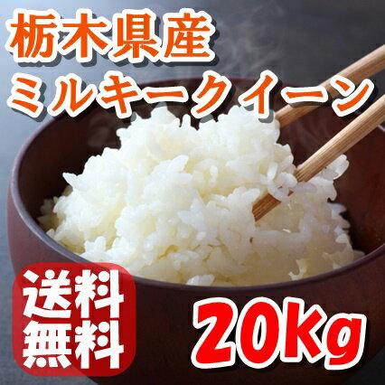 【H29年産】栃木県産ミルキークイーン 20kg(5kg×4袋)【送料無料】
