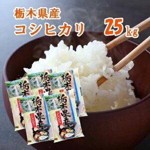 【R3年産】新米 栃木県産コシヒカリ 25kg(5kg×5袋)【送料込み】