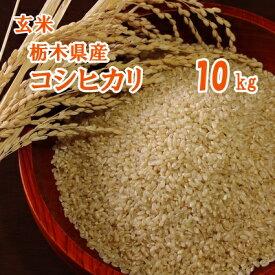 【R3年産】新米 栃木県産 コシヒカリ 玄米 10kg【送料込み】 お米 栃木 こしひかり