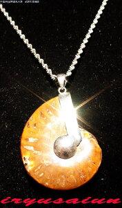 天然 アンモナイト 菊石 化石ペンダントトップ男女兼用 新品 一点ものレディースネックレスメンズネックレスnecklace ammonite fossil威龍彩雲