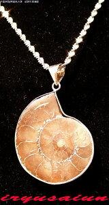天然 アンモナイト 菊石 カット化石 ペンダントトップ男女兼用 新品 一点ものレディースネックレスメンズネックレスnecklace ammonite fossil威龍彩雲