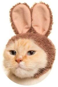 ねこのかぶりもの 第10弾 かわいいかわいい ねこうさぎちゃん スイーツカラー [ショコラ] 単品 ウサギ