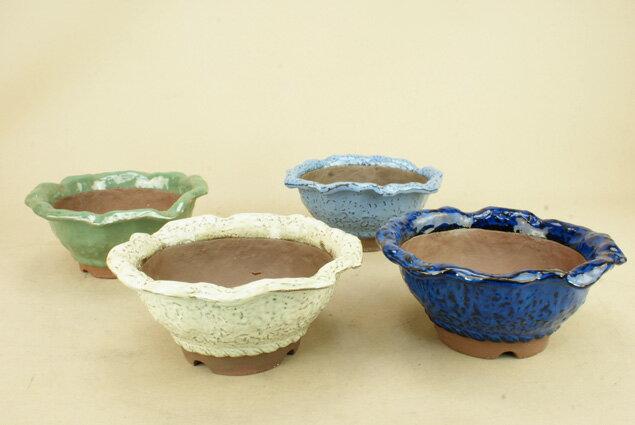 【盆栽鉢】 萬古焼 花型丸鉢 4色セット 5.5号 貴風サイズ (いよじ園 伊予路園)【母の日ギフト】