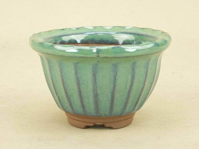 【盆栽鉢】 萬古焼 緑釉 波縁丸鉢 径10cm 小品サイズ (いよじ園 伊予路園)【母の日ギフト】