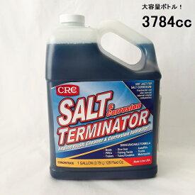 塩害腐食防止剤 ソルトターミネーター 3784cc 単品 SALT TERMINATOR ボート 水上バイク 塩害除去 97843