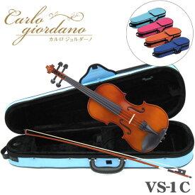 ■バイオリン アウトフィット VS−1  カルロ・ジョルダーノ