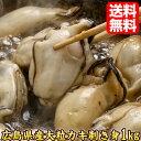 生牡蠣 広島産 1kg 牡蠣 ギフト プレゼント 贈答 当店人気 食品 海産物 かき カキ 食べ物 お歳暮 kaki1