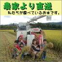 【送料無料(沖縄・九州を除く)】27年山形県庄内産 ササニシキ 農家で食べているお米 白米・精米10kg