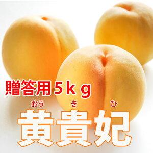 桃 黄金桃 送料無料 山形 【 贈答用 黄貴妃( おうきひ ) 秀 5kg ( 16〜20玉 ) 加藤農園 ※発送期間は(9月上旬頃〜9月下旬頃)】 敬老の日 贈答用 黄桃 もも 家庭用 5kg 農産物 ポイント