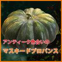 ハロウィン かぼちゃ カボチャ 生かぼちゃ マスキードプロバンス 大 1個 おばけかぼちゃ 特大 飾り 巨大 置物 装飾 …