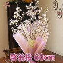 啓翁桜 山形 桜 お歳暮 ご年始 送料無料 テーブルやリビングに飾りやすい 特級60cm(10本入り) 花 花束 プレゼント …