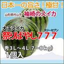 スイカ 尾花沢スイカ 西瓜 大玉スイカ すいか 送料無料 甘いスイカ 贈答用 スイカ『山形産 大玉スイカ祭りばやし777』…