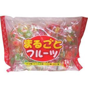 ●日進 まるごとフルーツ 1kg大袋 #1020