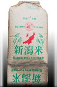 【送料無料】令和1年産 新潟県 わたぼうし もち米 玄米 1等 25kg