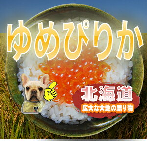 【送料無料】令和元北海道産 ゆめぴりか 1等玄米5kg【smtb-td】【nk_fs_0629】