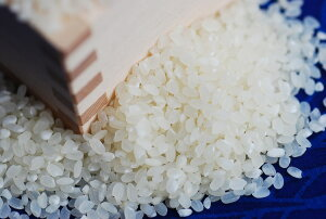 【業務用米】送料無料 訳あり お得な 業務用米 精白25kg 【nk_fs_0629】