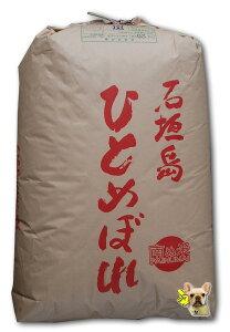 令和3年産 新米 沖縄 石垣産 ひとめぼれ 玄米5kg 超早場米【精米無料】