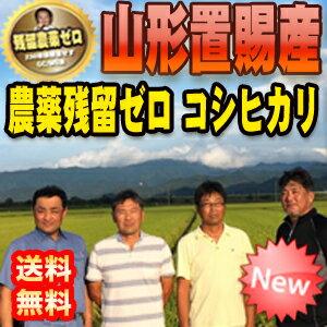 【送料無料】29年産 山形置賜産 残留農薬ゼロ コシヒカリ 1等 玄米5kg 【精米無料】【nk_fs_0629】