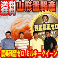 【送料無料】 29年産 山形東置賜産 残留農薬ゼロ ミルキークイーン1等 玄米5kg【nk_fs_0629】