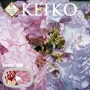 ケイコブルー ケイコピンク あじさい鉢植えギフト 5号鉢 フラワーオブザイヤー受賞 【さかもと園芸】 達人のあじさい …