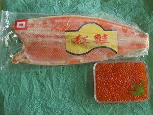鮭親子セット(いくら醤油漬500g+紅鮭フィレ1kg)〔E〕北港直販☆イクラ・しゃけ