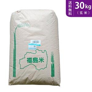 【送料無料】令和元年産 福島県中通り産コシヒカリ 30kg(玄米)【smtb-TD】【saitama】