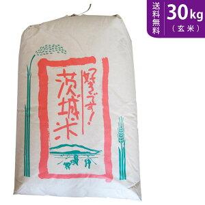 【送料無料】令和2年産 新米 茨城県産ミルキークイーン 玄米30kg【smtb-TD】【saitama】