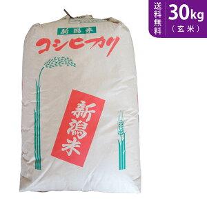 【送料無料】令和2年産 新潟県産コシヒカリ(玄米)30kg 【smtb-TD】【saitama】