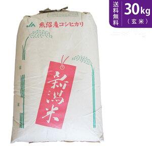 【送料無料】令和2年産 魚沼産コシヒカリ 玄米30kg 十日町地区 最高級【smtb-TD】【saitama】