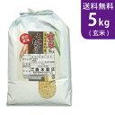 【送料無料】令和元年産 新米 玄米 魚沼産コシヒカリ 5kg 十日町地区 最高級 ギフトにおすすめ♪【smtb-TD】【saitama】