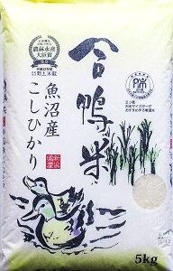 2年産 合鴨米魚沼産コシヒカリ 5kg