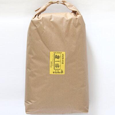 [業務用]麺一筋(小麦中力粉)業務用10kg[うどん粉][小麦粉100%]