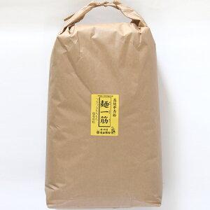 [業務用]麺一筋(小麦中力粉)業務用 10kg[うどん粉][小麦粉100%][備蓄用]