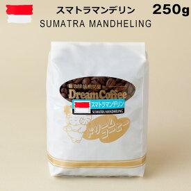 コーヒー豆 250g スマトラマンデリン100% ドリームコーヒー 【メール便送料無料】