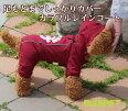 【メール便送料無料】カラフルレインコート/ワインレッド中-大型犬用(2XL-4XLサイズ)【RUISPETルイスペット】ドッグウェア