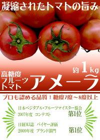 """静岡県産""""高糖度フルーツトマトアメーラ""""10〜20個前後約1kg化粧箱入り"""